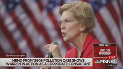 MSNBC Warns Democrats on Warren: 'Whiff of Fraudulence'