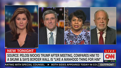 CNN Guest Declares Border Wall Supporters Racist